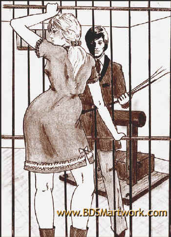 Anita the country girl and the house of correction (Stig bdsm comics)
