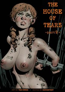 The house of tears 2 (adult album by Ted Owen)